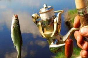 Бывший глава Росрыболовства раскритиковал предлагаемый «налог на рыбалку»